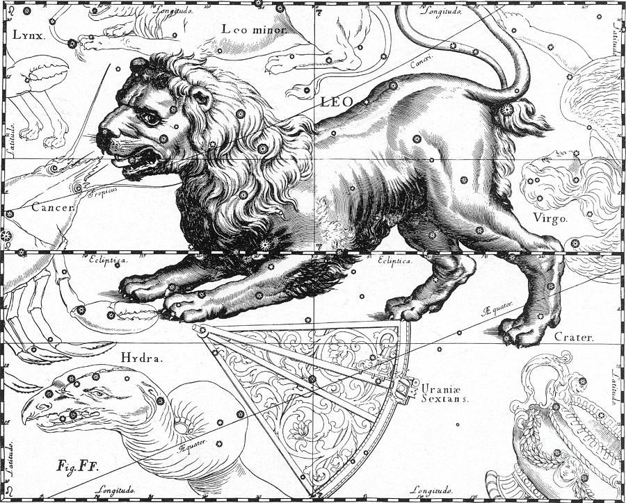 Leo, The Hevelius Firmamentum, 1690 Photograph