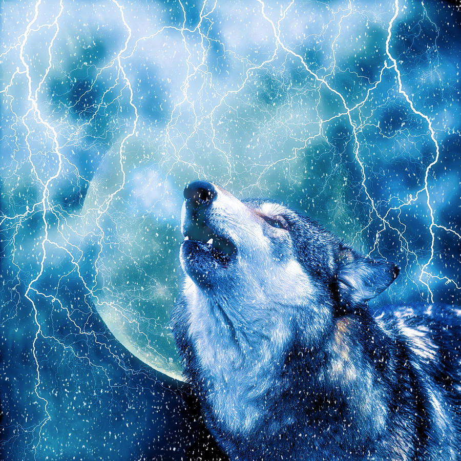 wolves and lightning wallpapers - photo #26