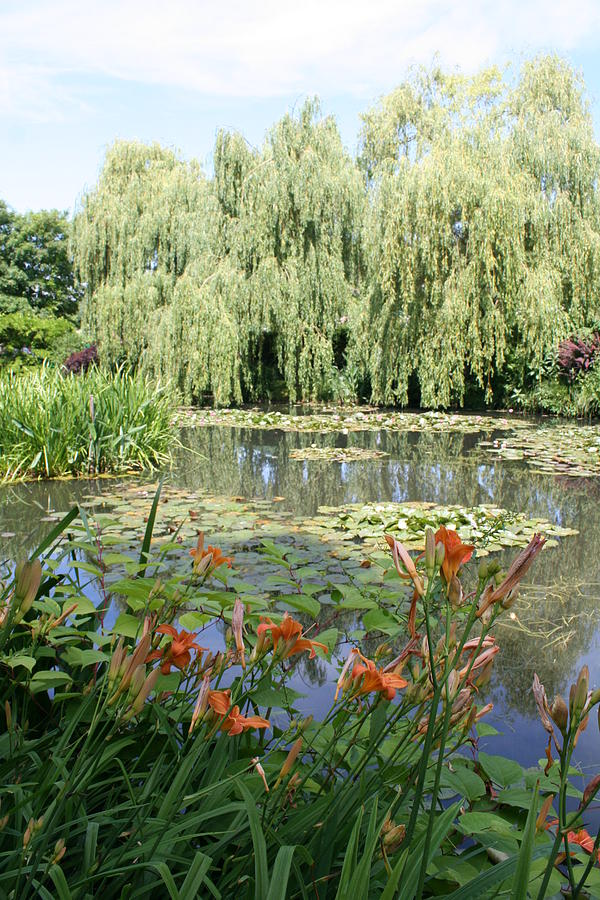 Lily Pond - Monets Garden Photograph  - Lily Pond - Monets Garden Fine Art Print