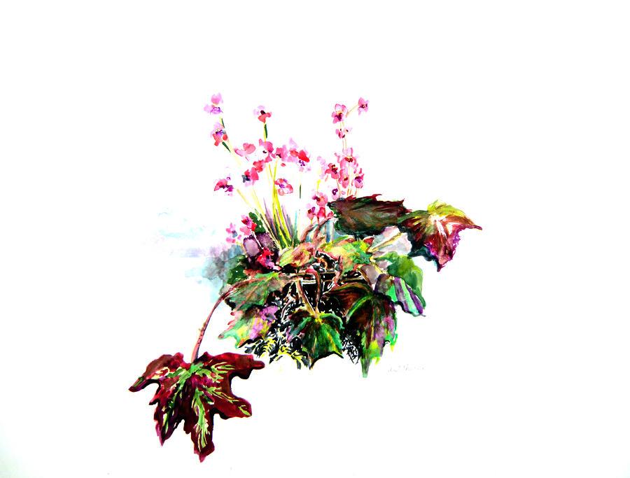 Linda Begonia Painting