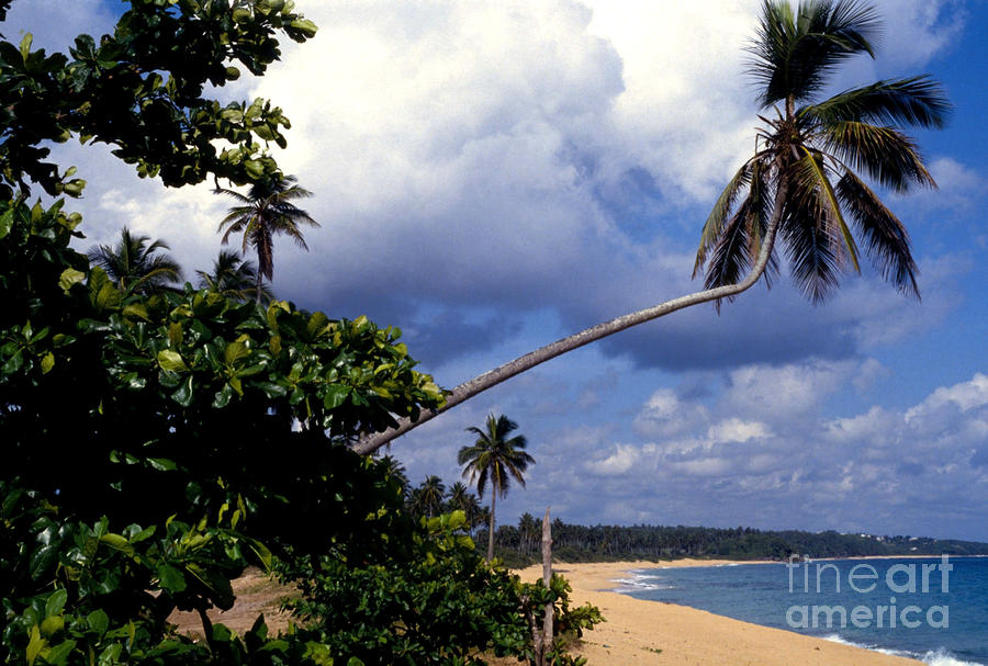 Los Tubos Beach Photograph