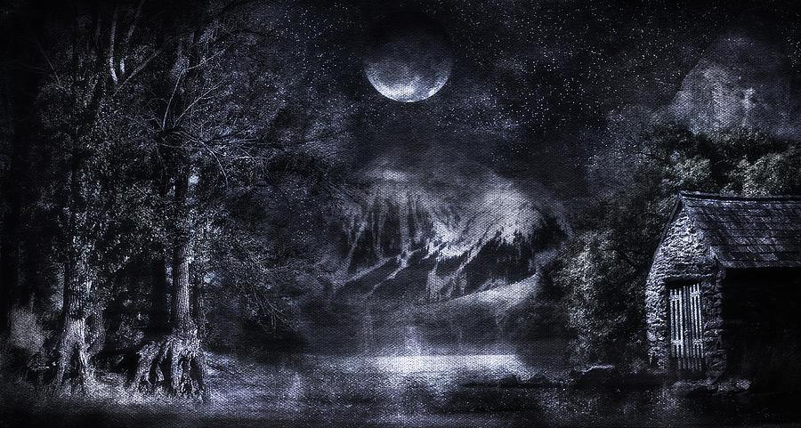 Magical Night Digital Art