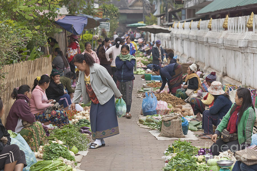 Morning Market In Luang Prabang Photograph  - Morning Market In Luang Prabang Fine Art Print