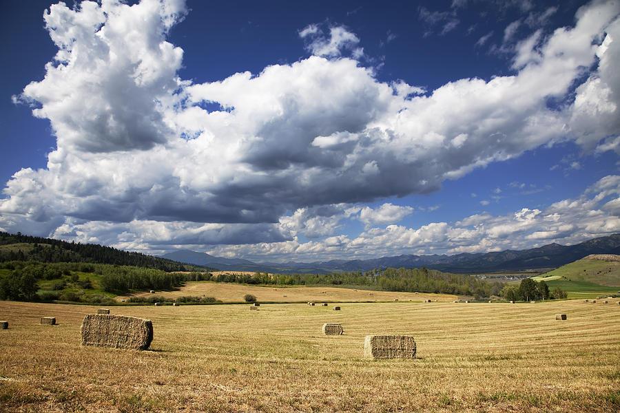 Mountainfarm Photograph