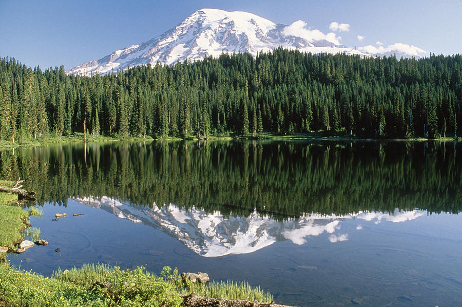 Mt Rainier Reflected In Lake Mt Rainier Photograph  - Mt Rainier Reflected In Lake Mt Rainier Fine Art Print