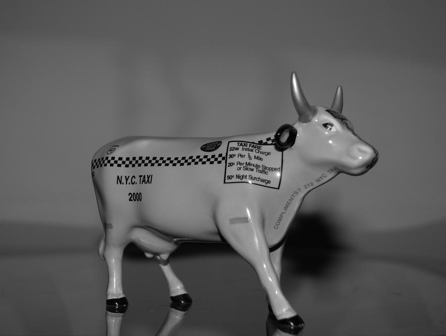 N Y C Taxi Cow Photograph