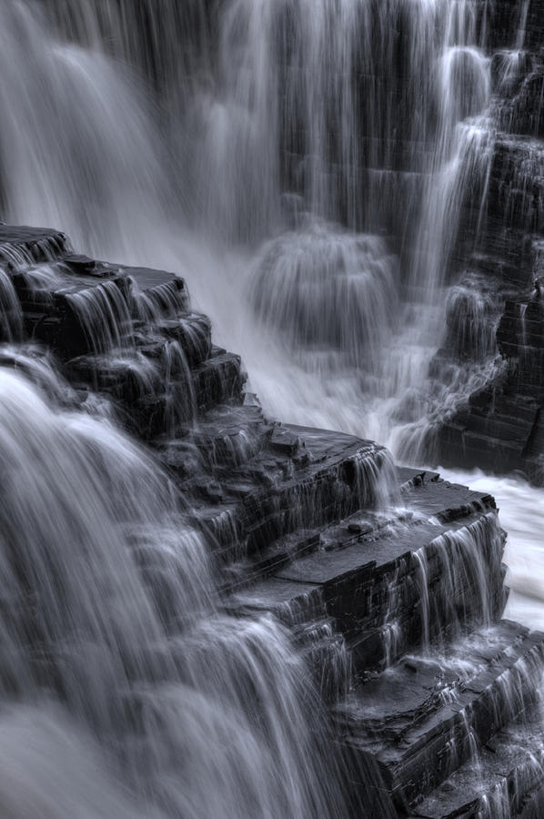 Natures Steps Photograph