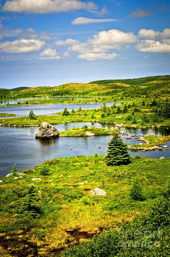 Lakeshore Photograph - Newfoundland Landscape by Elena Elisseeva