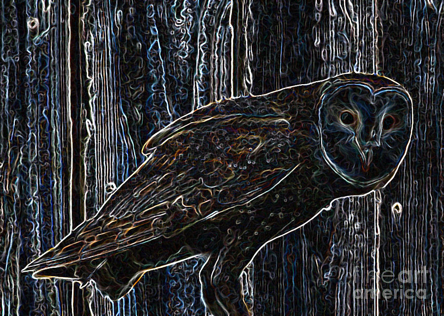 Night Owl - Digital Art Photograph