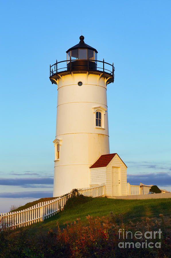 Nobska Point Light Photograph  - Nobska Point Light Fine Art Print