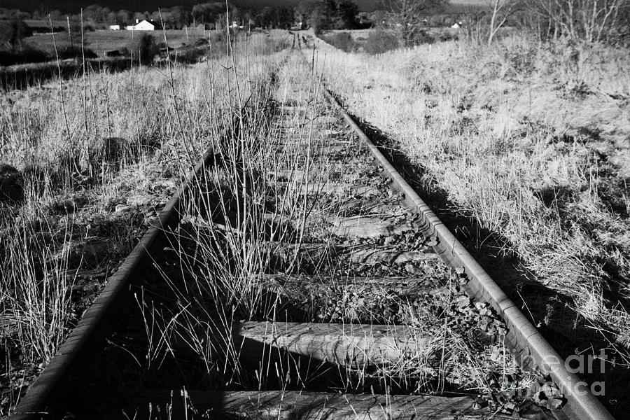 Old Abandoned Great Southern And Western Railway Line In County Sligo Republic Of Ireland Photograph  - Old Abandoned Great Southern And Western Railway Line In County Sligo Republic Of Ireland Fine Art Print