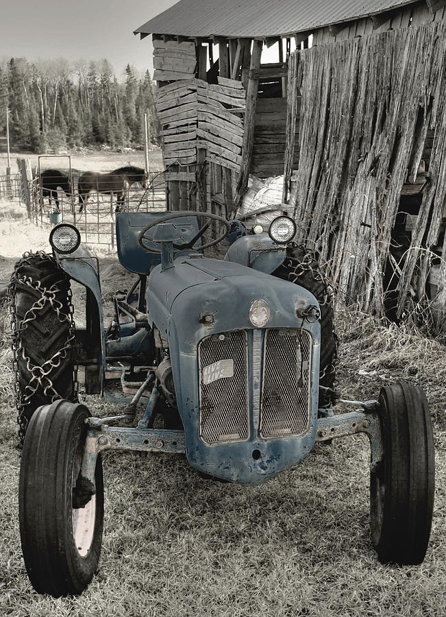 Old Blue Photograph  - Old Blue Fine Art Print