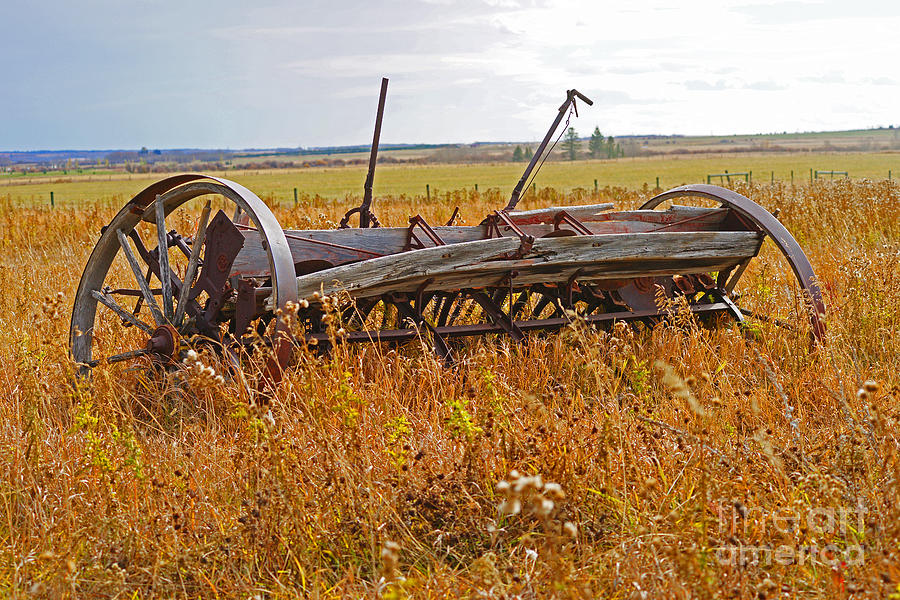 Old Farm Equipment Photograph by Randy Harris