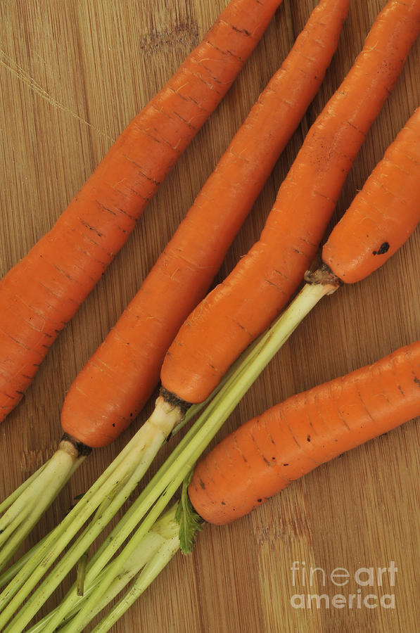 Orange Carrots Photograph