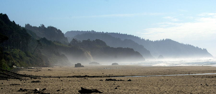 Oregon Coast 8 Photograph
