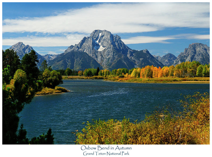 Oxbow Bend In Autumn Photograph  - Oxbow Bend In Autumn Fine Art Print