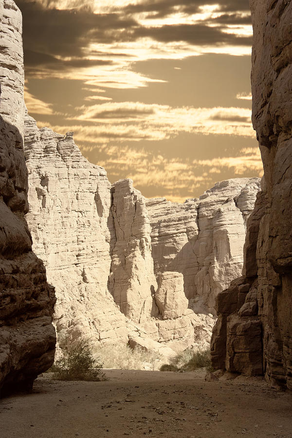 Painted Canyon Trail Photograph  - Painted Canyon Trail Fine Art Print