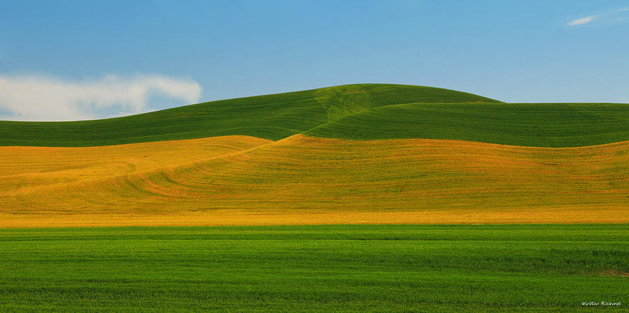 Palouse Panorama Photograph  - Palouse Panorama Fine Art Print