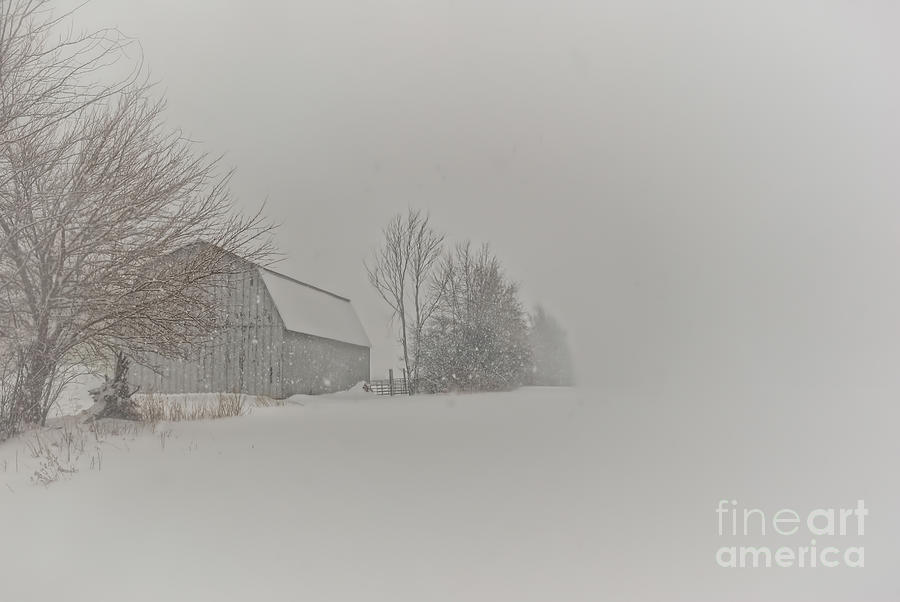 Peace And Quiet Photograph  - Peace And Quiet Fine Art Print