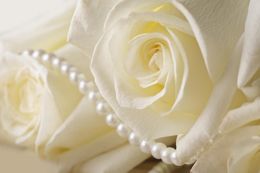 roses and pearls - photo #5