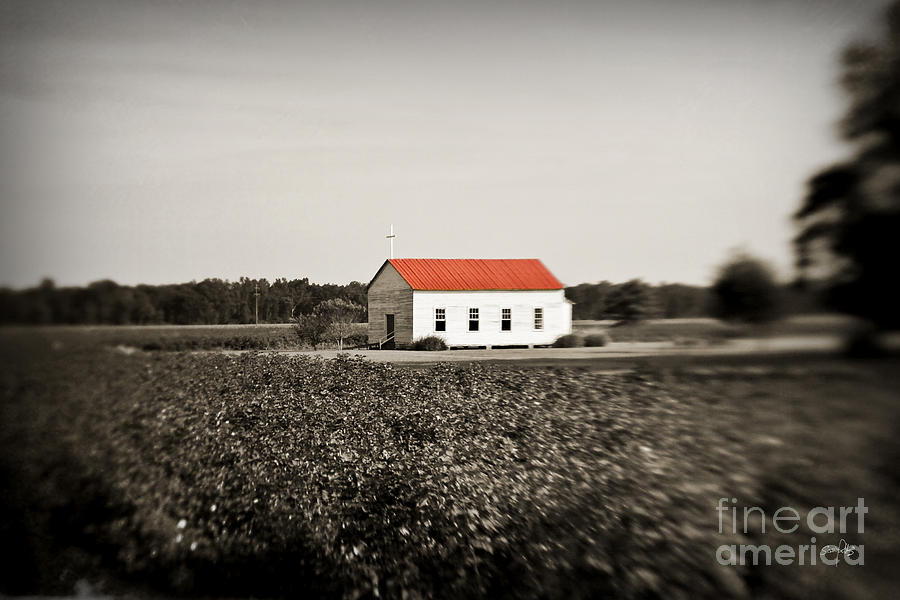 Plantation Church Photograph  - Plantation Church Fine Art Print