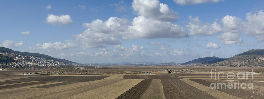 Plowed Agricultural Fields In The Beit Netofa Valley Photograph