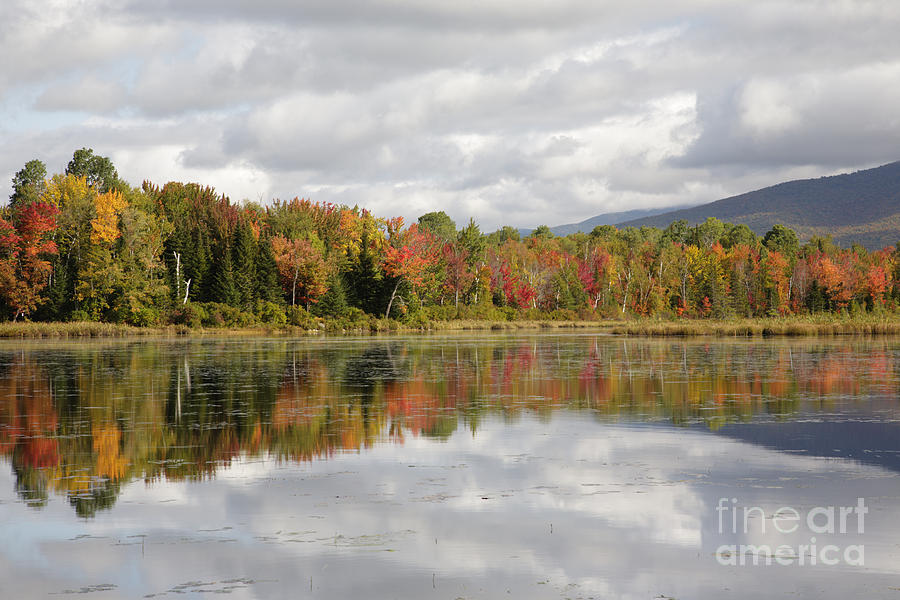 Pondicherry Wildlife Refuge - Jefferson New Hampshire Photograph  - Pondicherry Wildlife Refuge - Jefferson New Hampshire Fine Art Print
