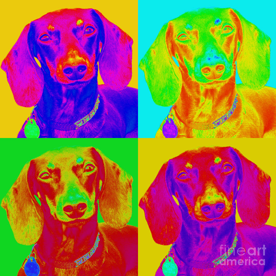 Pop Art Dachshund Digital Art  - Pop Art Dachshund Fine Art Print