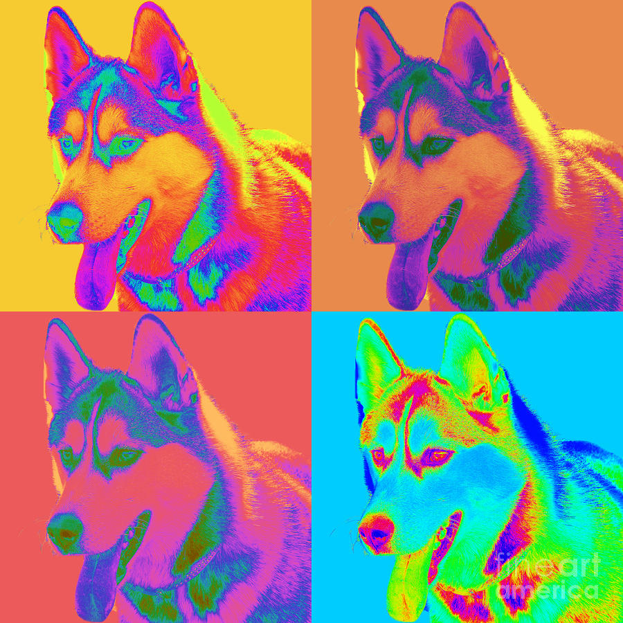 Pop Art Siberian Husky Digital Art