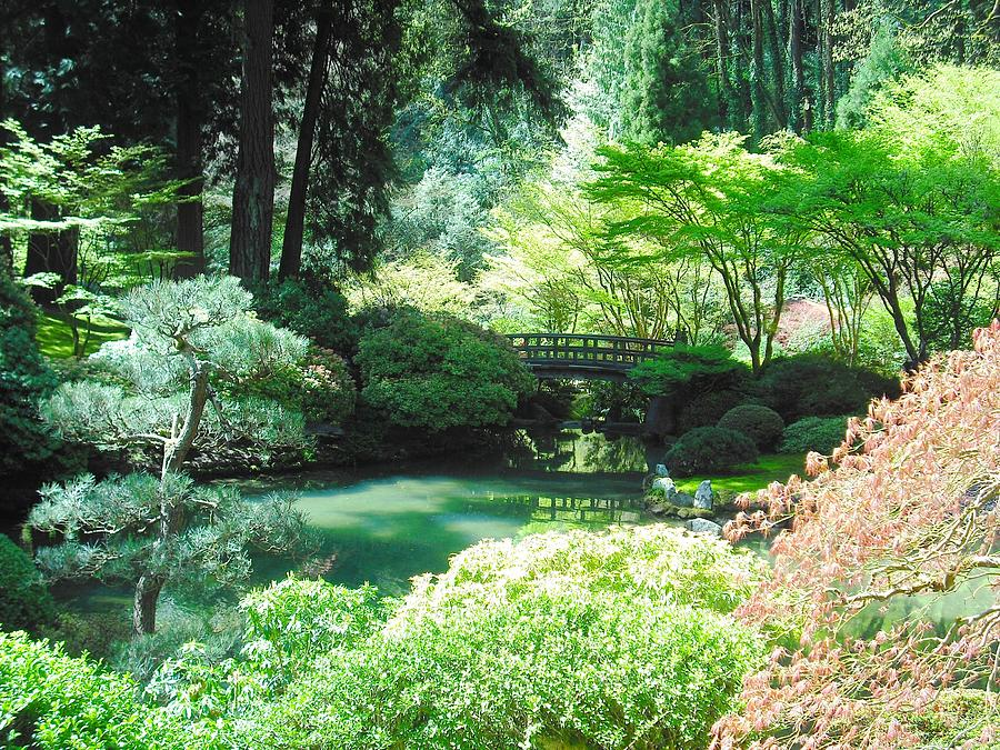 Portland Japanese Garden Photograph By Kelly Manning