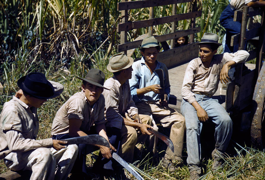 Puerto Rico. Sugar Cane Workers Resting Photograph