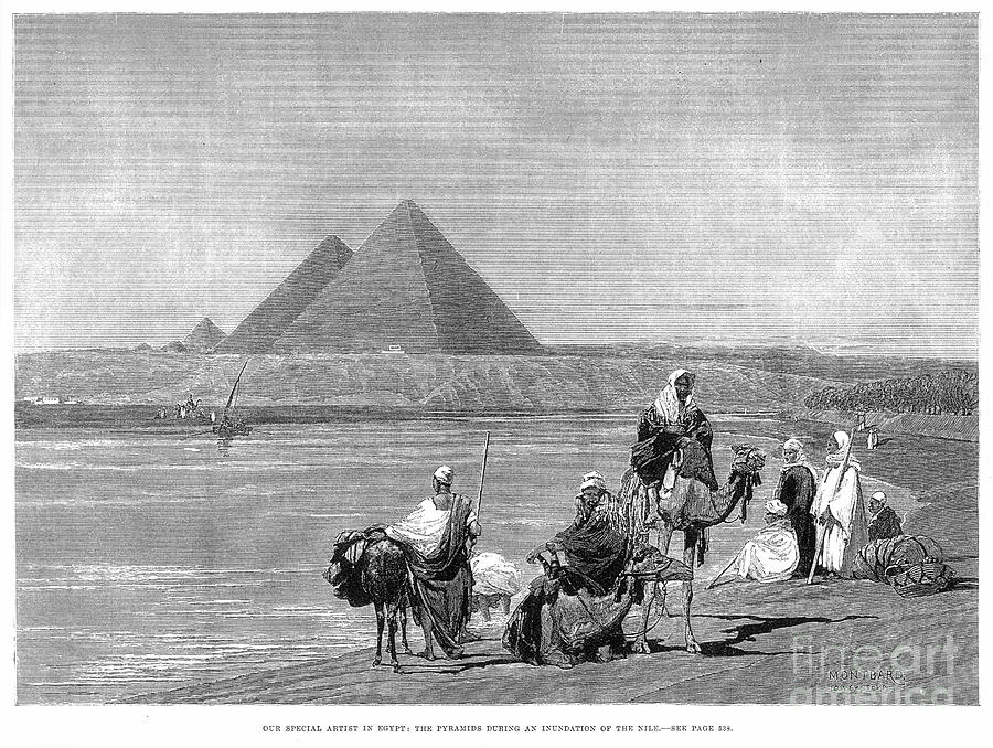 Pyramids At Giza, 1882 Photograph