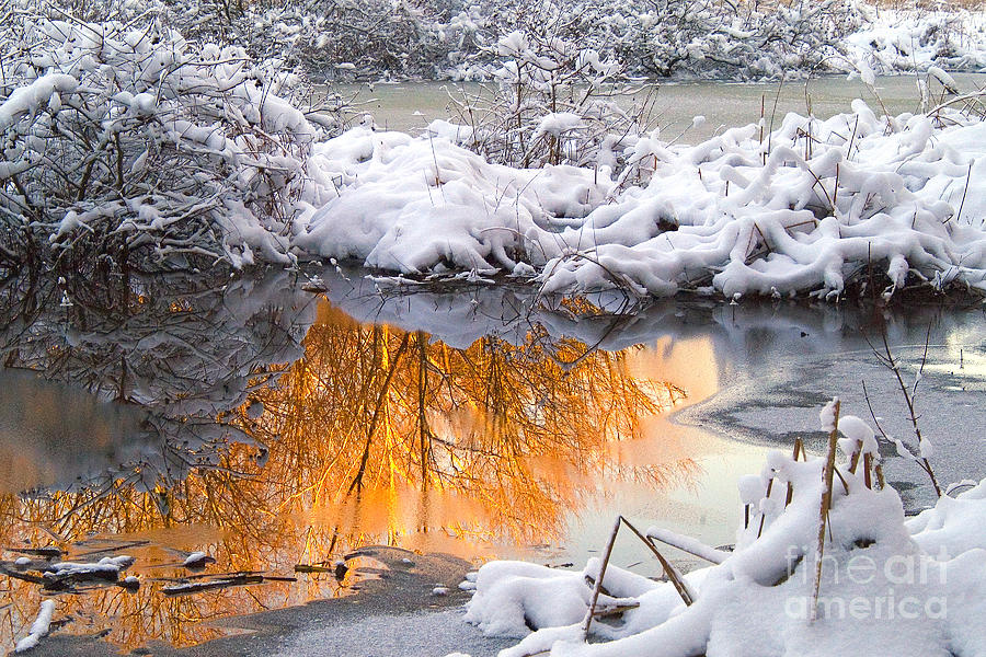 Reflections In Melting Snow Photograph  - Reflections In Melting Snow Fine Art Print