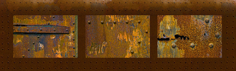 Rust Triptych Photograph