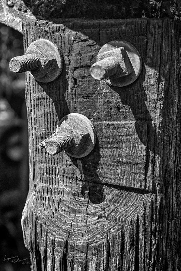 Rusty Bolts Photograph  - Rusty Bolts Fine Art Print