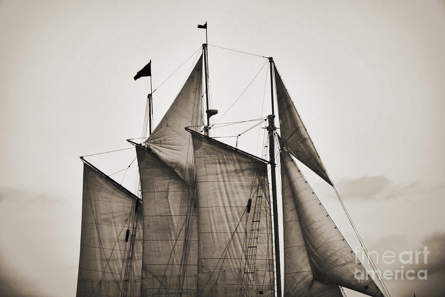 Schooner Pride Tall Ship Charleston Sc Photograph  - Schooner Pride Tall Ship Charleston Sc Fine Art Print