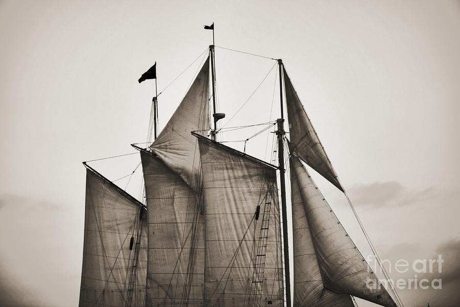 Schooner Pride Tall Ship Charleston Sc Photograph