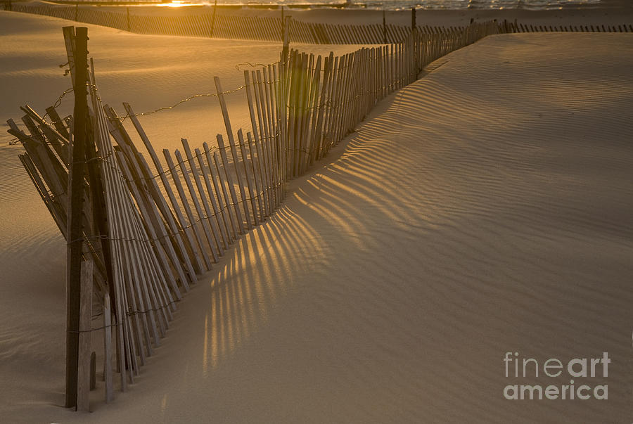Shadows Photograph  - Shadows Fine Art Print