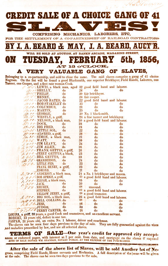 Slave Auction Notice Photograph