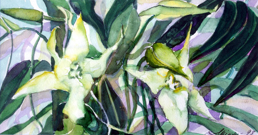 Spider Orchids Painting