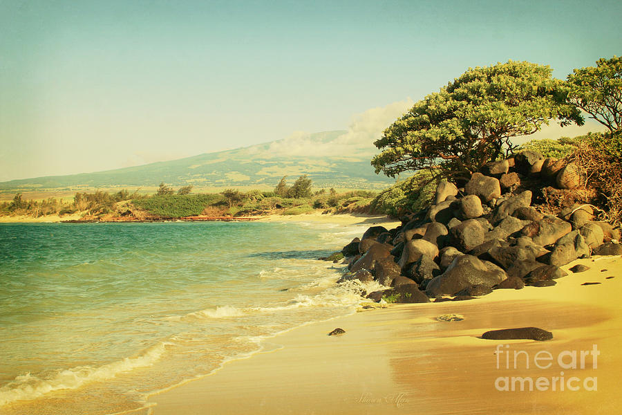 Aloha Photograph - Sprecks by Sharon Mau