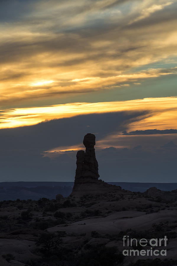 Southwest Photograph - Standing Tall by Sandra Bronstein