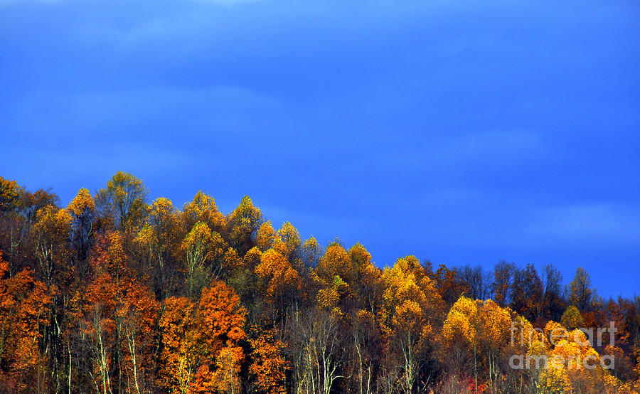 Stormy Sky Last Fall Color Photograph