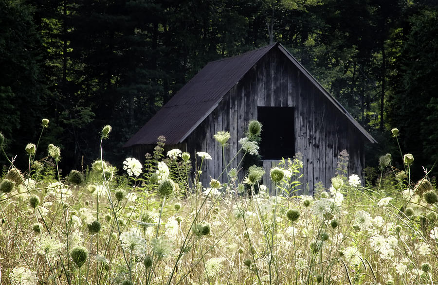 Summer Barn Photograph