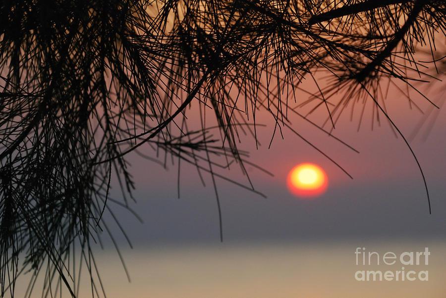Kendwa Photograph - Sunset In Zanzibar by Alan Clifford
