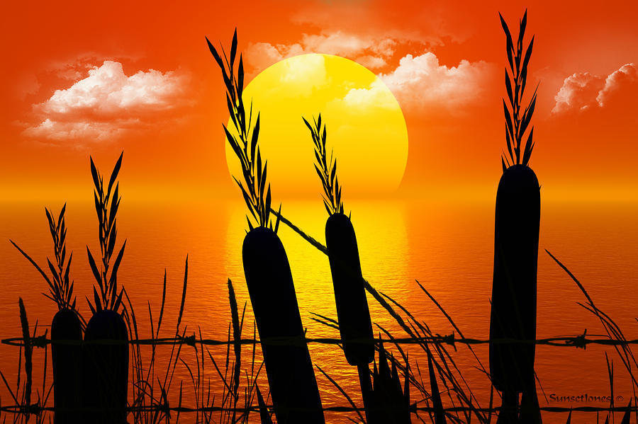 Sunset Lake Digital Art