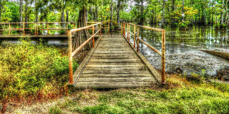 Swamp Dock Photograph