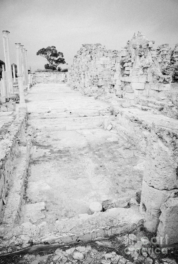 Swimming Pools In The Gymnasium And Baths In The Ancient Site Of Old Roman Villa Salamis Photograph