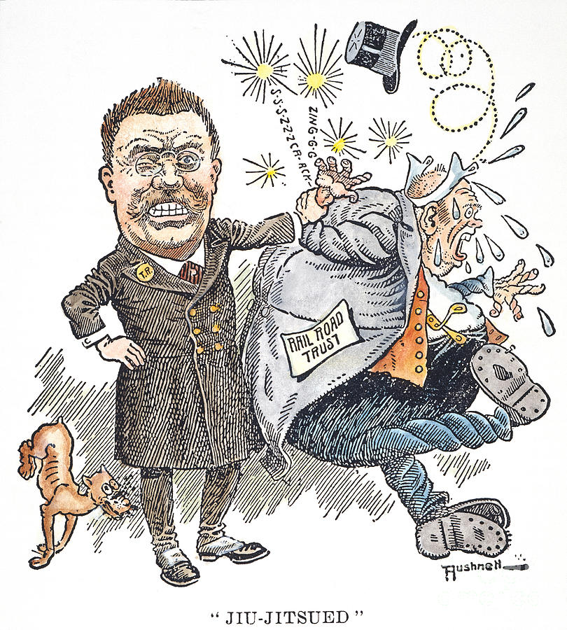T. Roosevelt Cartoon Photograph  - T. Roosevelt Cartoon Fine Art Print