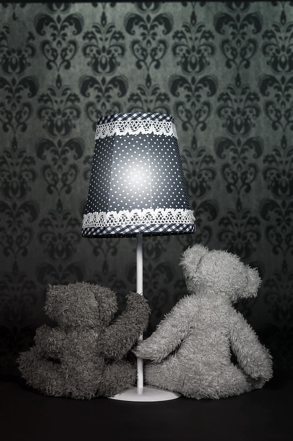 Teddy Bears Photograph  - Teddy Bears Fine Art Print